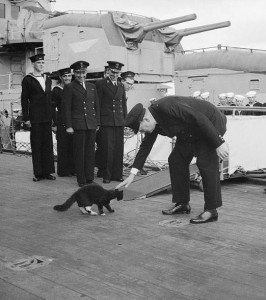 Winston Churchill pats ship's cat Blackie, who is considering leaving the HMS Prince of Wales to join the crew of the American destroyer, USS McDougal [Public domain, wiki/IWM]