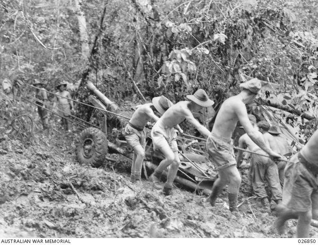25-pounder gun of the Royal Australian Artillery being pulled through the jungle, Kokoda Trail, Owen Stanley Range, Papua New Guinea, September 1942 [Public domain, Australian War Memorial 026850]